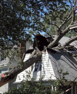 You might have some roofing issues!